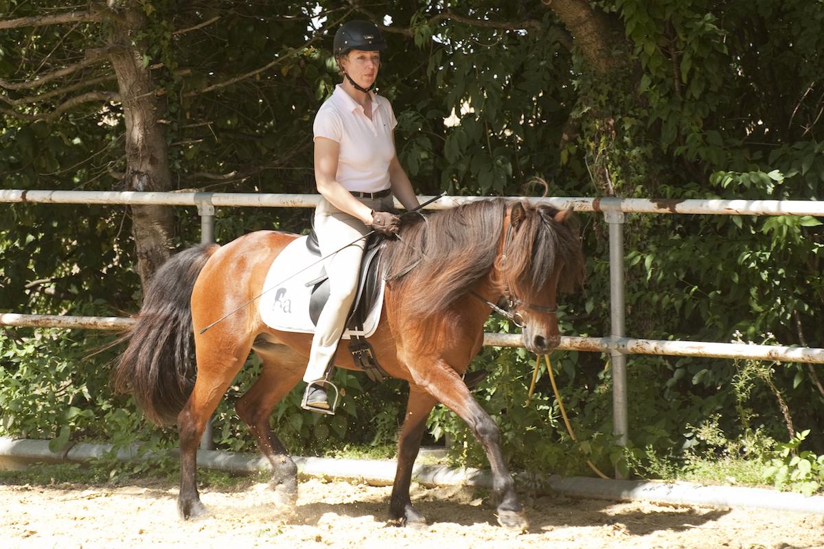 Andrea Lipp mit Stjarna - Foto: Sabine van Waasen