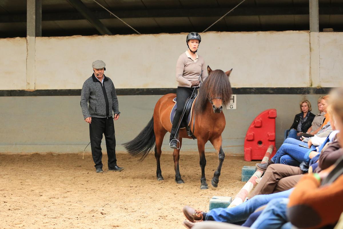 Unterricht bei Manuel Jorge de Oliveira. Stjarna im September 2014
