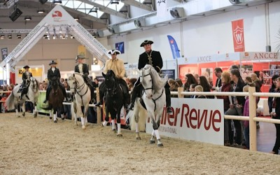 Messe Hund & Pferd in Dortmund