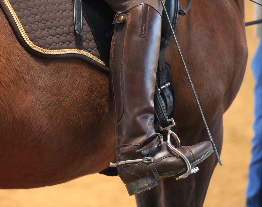 Krankes Pferd durch falsches Reiten?