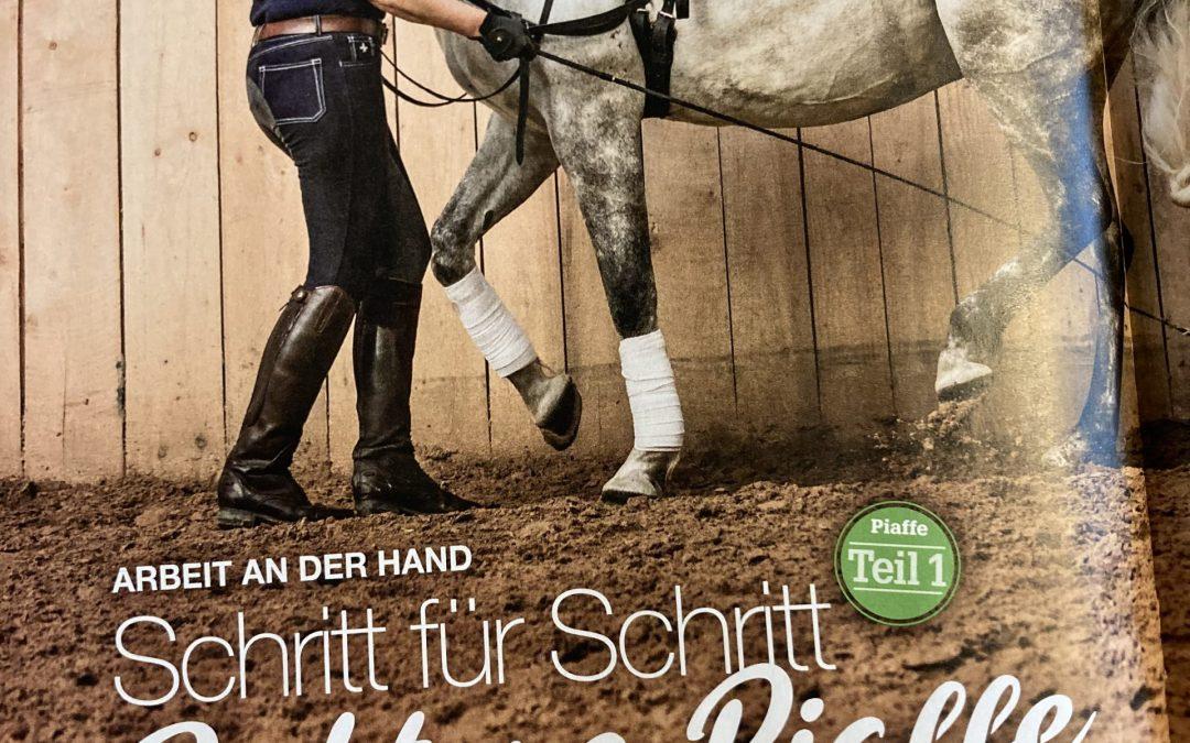 """Zweiteilige Serie in der """"Mein Pferd"""""""
