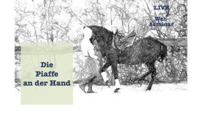 Die Piaffe an der Hand – 39€