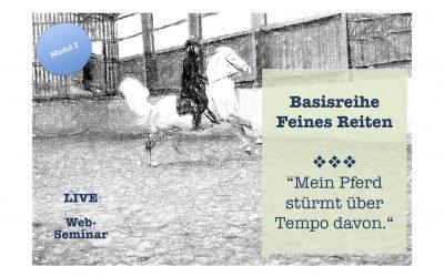 Mein Pferd stürmt über Tempo davon (Modul 2- Basisreihe Feines Reiten) – 39€